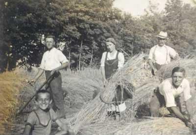 aratás_feketeszél-1960-as_évek